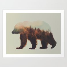 Norwegian Woods: The Brown Bear Art Print
