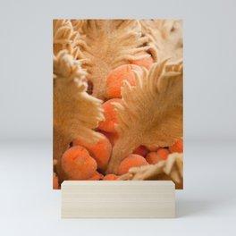Female cyca Mini Art Print
