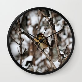 Friendly Freezing Wall Clock