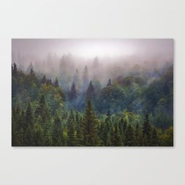 Wander Progression Canvas Print