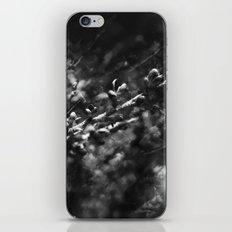 infinite fruits iPhone & iPod Skin