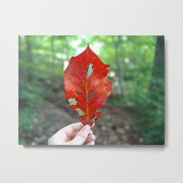 This is not a Red Leaf Metal Print