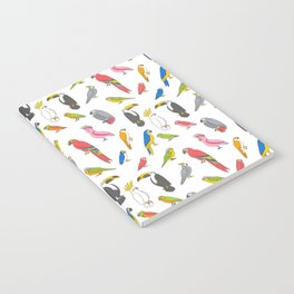 Tropical birds jungle animals parrots macaw toucan pattern Notebook