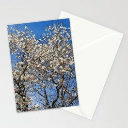 May flowering tree Stationery Cards