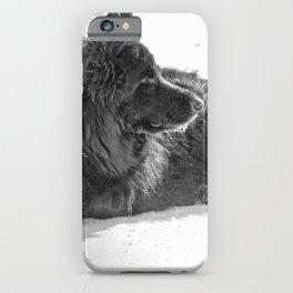 Black Long-Haired German Shepherd Dog 10 iPhone Case