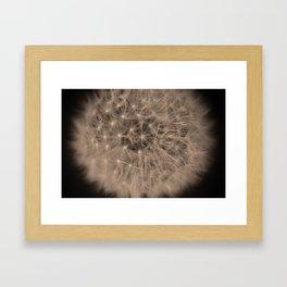 Macro Dandelion Fine Art Photography Framed Art Print