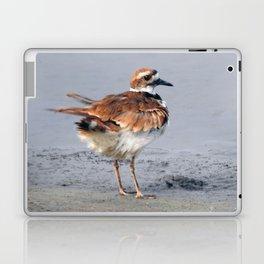 Juvenile Killdeer Laptop & iPad Skin