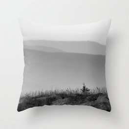 View in the mountains Throw Pillow