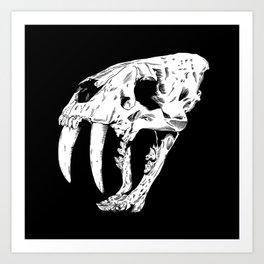 Sabertooth Tiger Skull Art Print