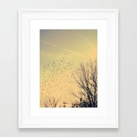 fly Framed Art Prints featuring Fly by Olivia Joy StClaire