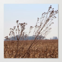 Next to the Gravelroad Canvas Print