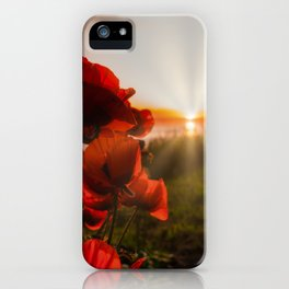 Poppies watching the sun set iPhone Case
