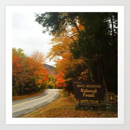 White Mountain National Forest Art Print