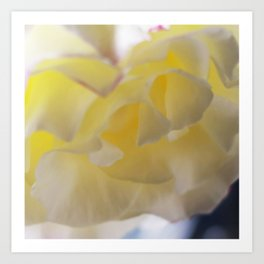 Rose Yellow Art Print