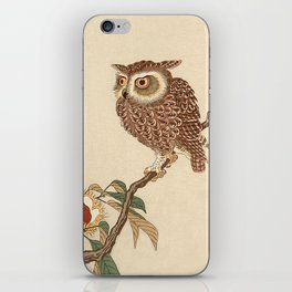 Owl Sitting on Branch iPhone Skin