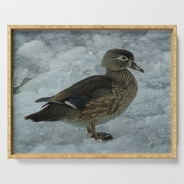 Cold Duck. Serving Tray