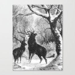 Winter storm Canvas Print