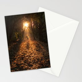 Autumn Fantasy : Let the Light Guide You Stationery Cards