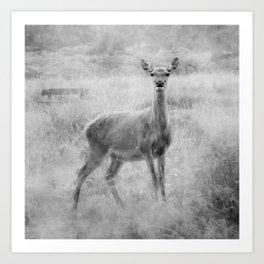Doe A Deer A Female Deer, In Mono Art Print