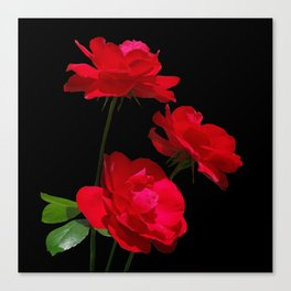 Red roses on black background Canvas Print