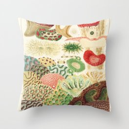 Great Barrier Reef Corals from The Great Barrier Reef of Australia (1893) by William Saville-Kent Throw Pillow
