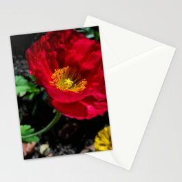 Anemone closeup, 2019 from Roberta Winters Photography Stationery Cards