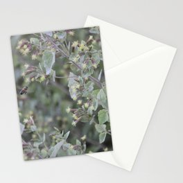Bee Work Stationery Cards