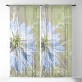 Blue flower close up Nigella love in the mist Sheer Curtain