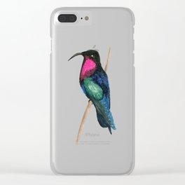 Purple-throated Carib Clear iPhone Case