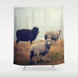 My Sheep Shower Curtain