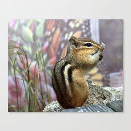 Chipmunk Spunk Canvas Print