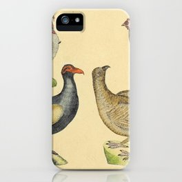 035 meleagris gatto pavo Helmeted Guineafowl Eurasian Capercaillie10 iPhone Case