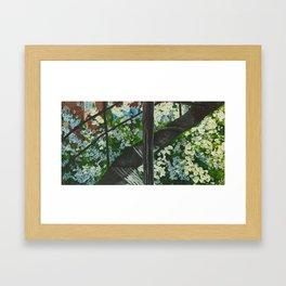 Pear Tree Framed Art Print