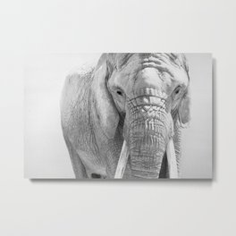 Elephant Photography | Wildlife Art | African | Nature | Animal Photography | Black and White Metal Print