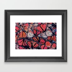 Monarch Butterflies II Framed Art Print
