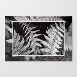 infinite growth Canvas Print