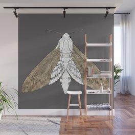 Moth pattern Wall Mural