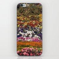 the neighbourhood iPhone & iPod Skins featuring Some neighbourhood called flower by Martin Carri