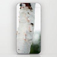 birch iPhone & iPod Skins featuring Birch by Katie Kirkland