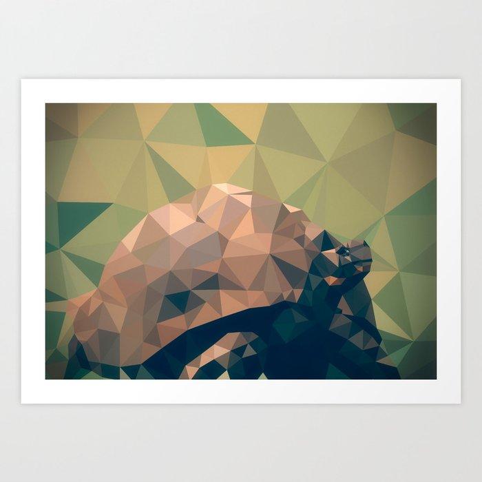 Triangular tortoise Art Print