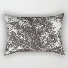 Growth | Estes Park, Colorado Rectangular Pillow