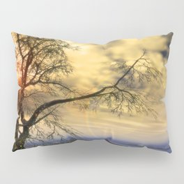 Tree in November sun Pillow Sham