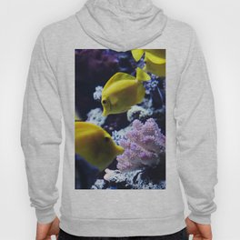 Under the Sea Swimming Yellow Fish Coral Reef Sea Anemone Underwater Photography Wall Art Print Hoody