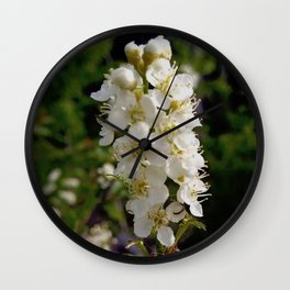 Blooming Chokecherry Stalk Wall Clock