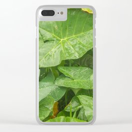 Florida: Lush Forest 4 Clear iPhone Case