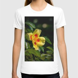 simply colourful T-shirt