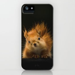 squirrel in the dark iPhone Case