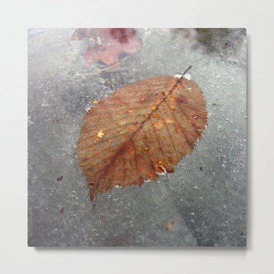 cold winter III Metal Print