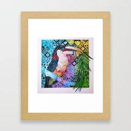 The Origin of the Aracari ( Toucan Bird Whisperer Project ) Framed Art Print
