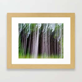 Minnesota Pines Framed Art Print